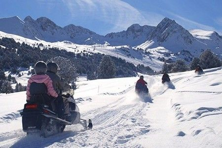 Offer mushing and snowmobile excursion